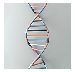 GeneticsCircle